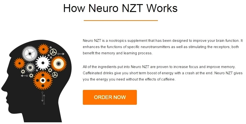 how neuro nzt works