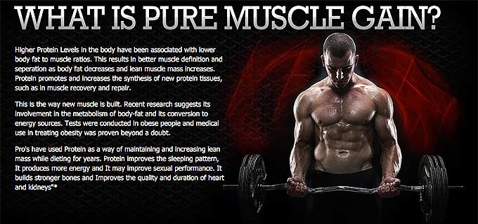 what is pure muscle gain